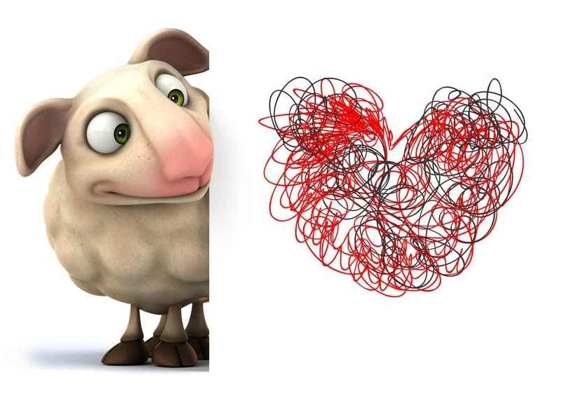 Le webmarketer de contenu : un mouton à au moins 5 pattes dont une est graphique