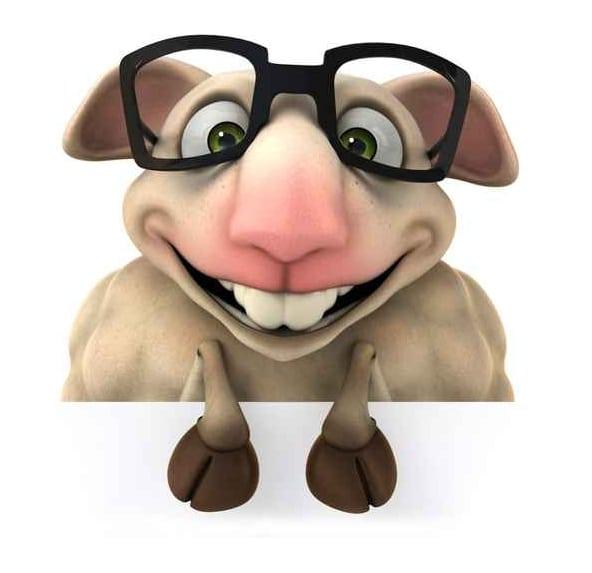 Le webmarketer de contenu : un mouton à au moins 5 pattes qui est d'abord un marketeur