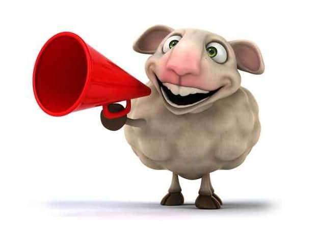 Le webmarketer de contenu : un mouton à au moins 5 pattes dont une est de savoir réaliser des vidéos