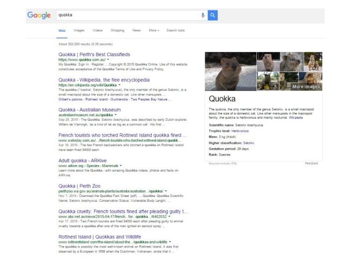 SERP Google quokka