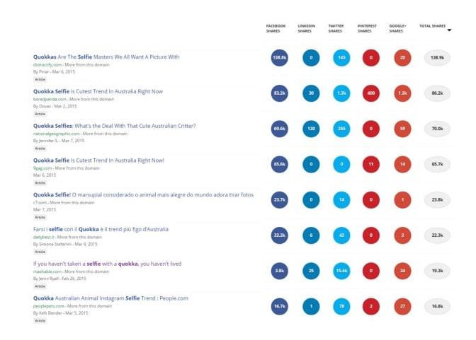 Résultats quokkas sur les réseaux sociaux
